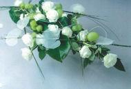 Begrafenissen Van Den Bogaert